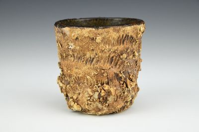 Ant Tunnel Cup with Ant